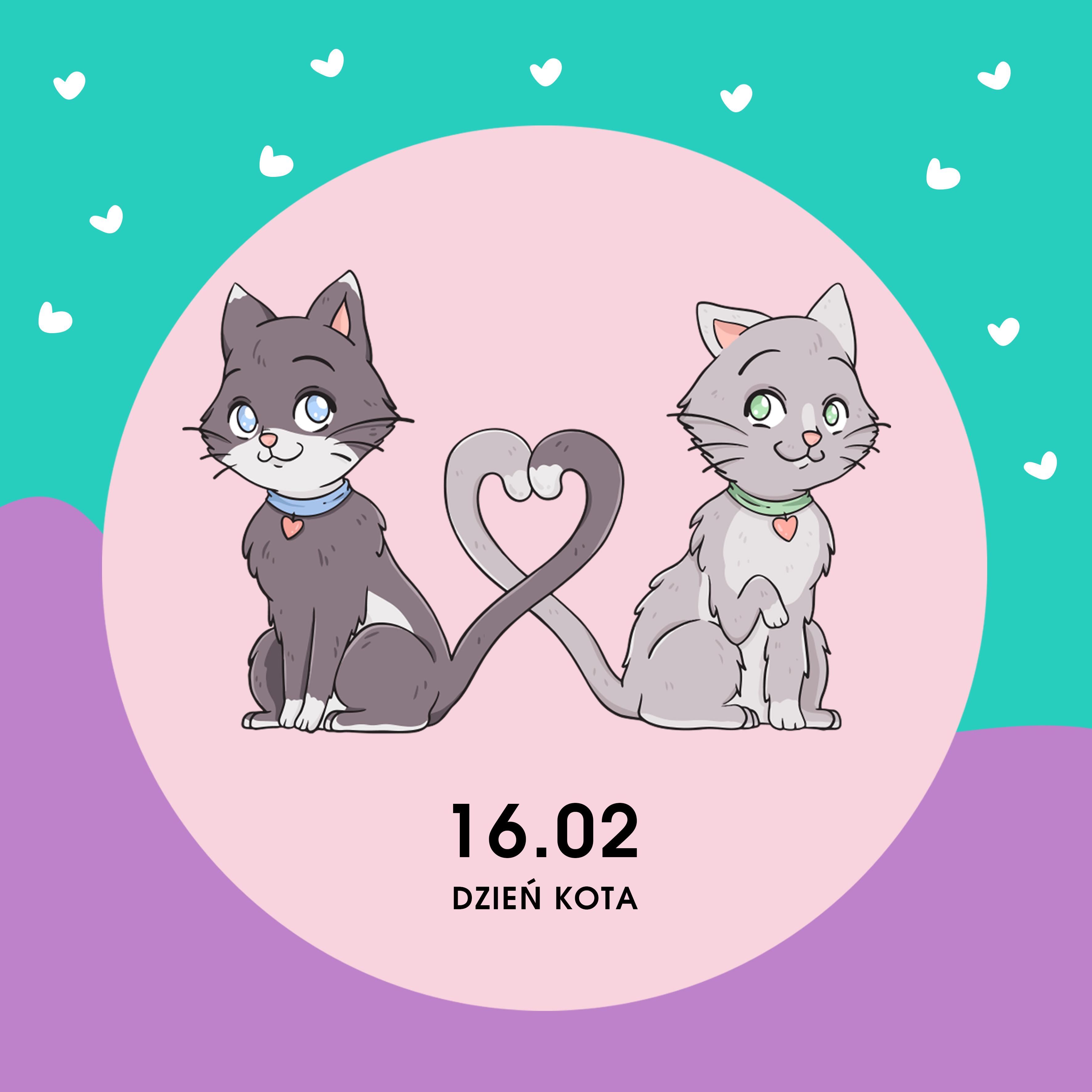 1-22.02 Zbieramy dary dla kotów